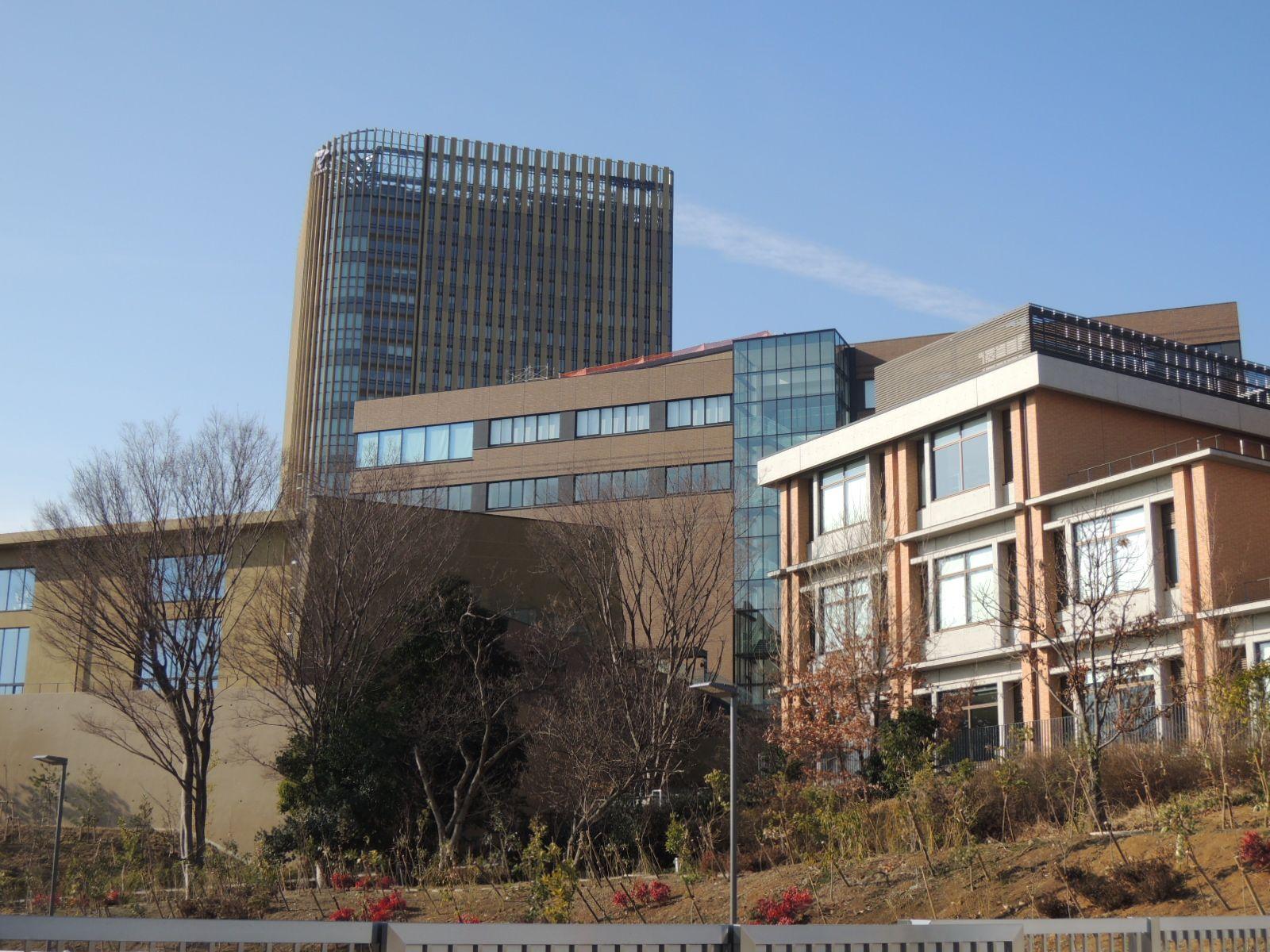 大学 八王子 帝京